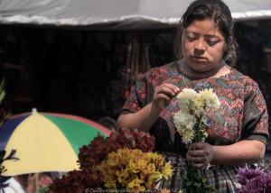 il cuore del latino america, una donna maya raccogliendo fiori
