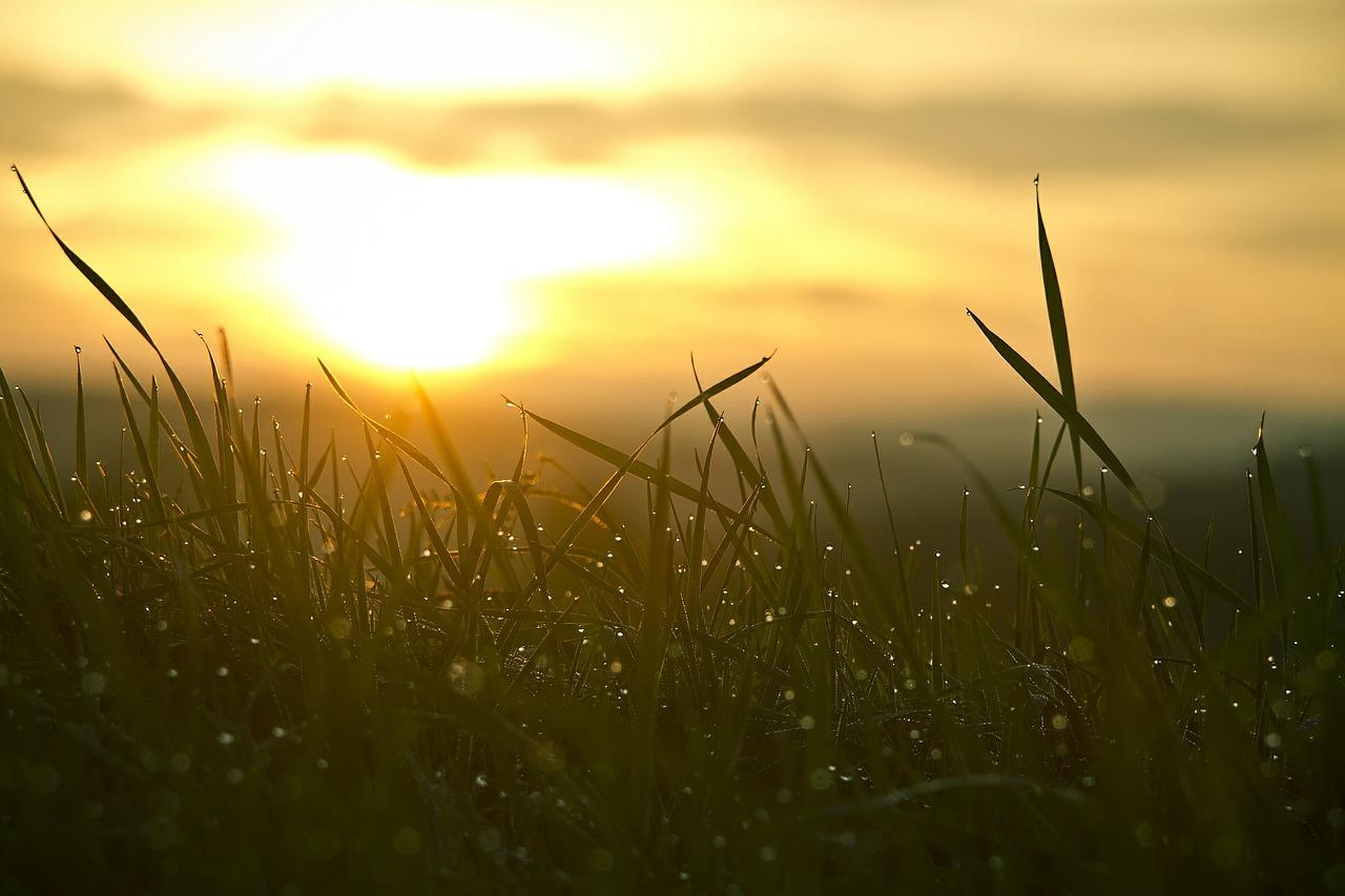 Svegliarsi la mattina e vedere le luci dell'alba