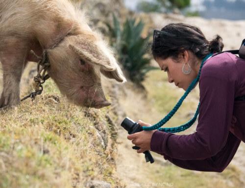 Huaraz e il cuore delle Ande