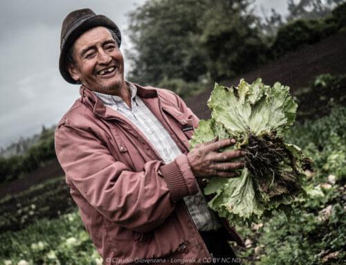 Viaggiare da Soli e Mangiare sano – Consigli alimentari per Nomadi